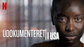Udokumenteret i USA (2019)